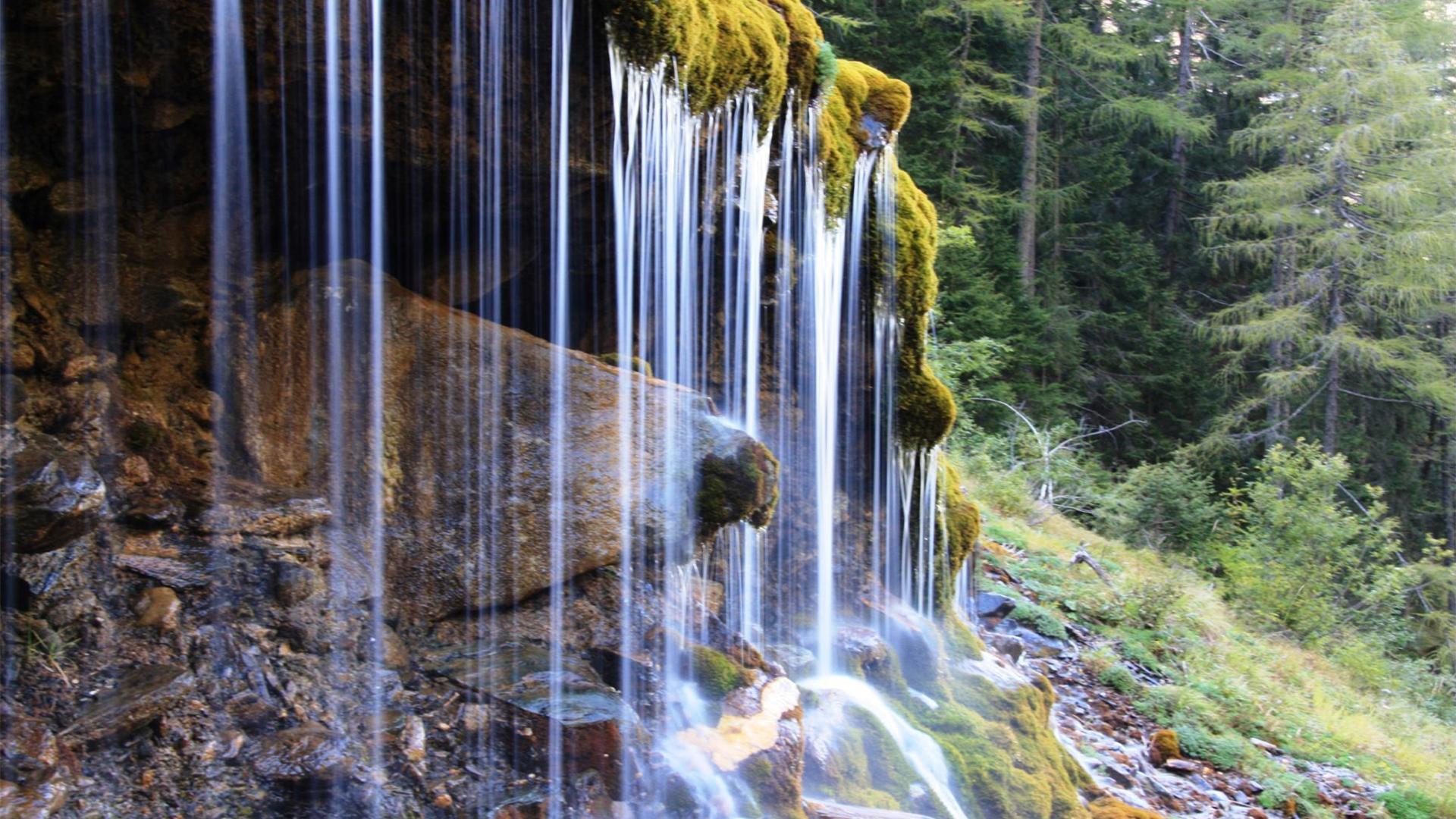 Rose_3_Wasserfall